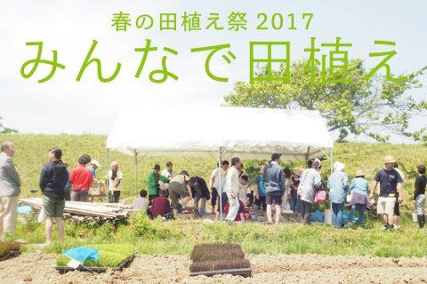 相馬田んぼアート2017春の田植え祭「みんなで田植え」 @ 相馬田んぼアート2017春の田植え祭 | 相馬市 | 福島県 | 日本
