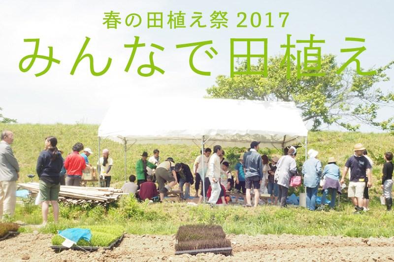 相馬田んぼアート2017春の田植え祭「みんなで田植え」