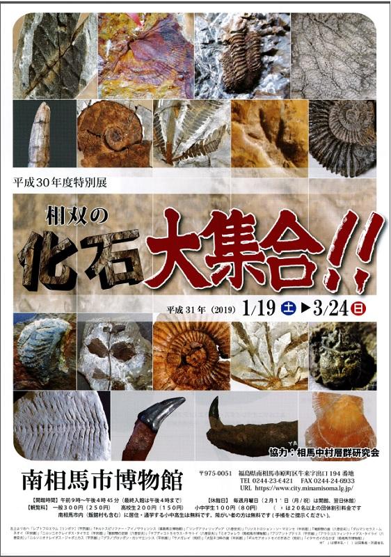 平成30年度特別展 「相双の化石大集合!」 @ 南相馬市博物館