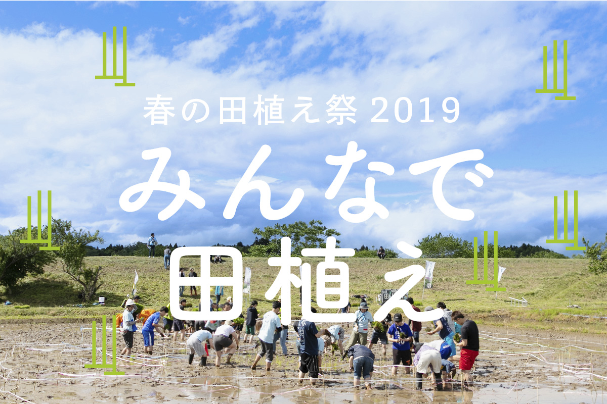 相馬田んぼアート春の田植え祭2019「みんなで田植え」 @ 相馬田んぼアート春の田植え祭2019