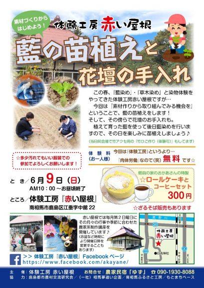 2019.6.9体験工房赤い屋根「藍の苗植えと花壇の手入れ」